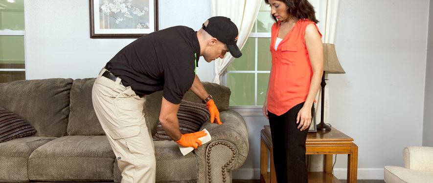 Centralia, IL carpet upholstery cleaning